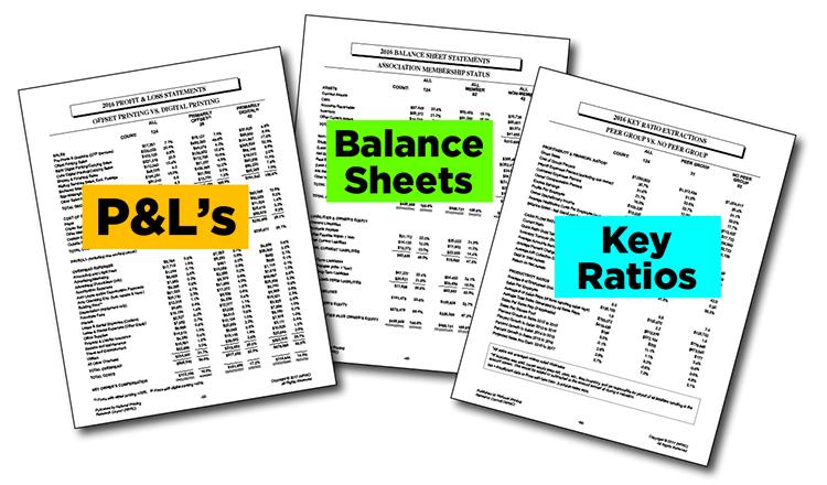 Samples of P&Ls, Balance Sheets, Key Ratios